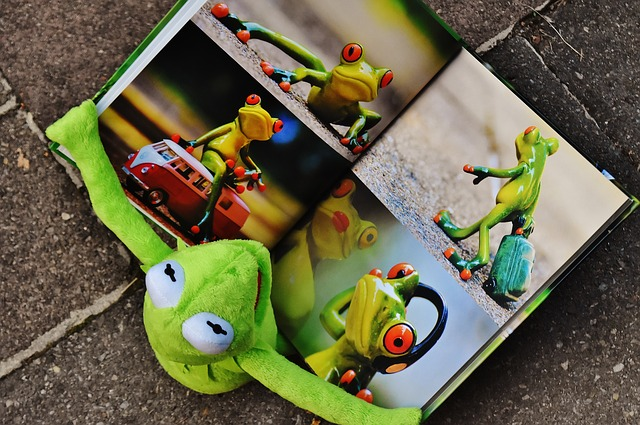 obrázková kniha.jpg
